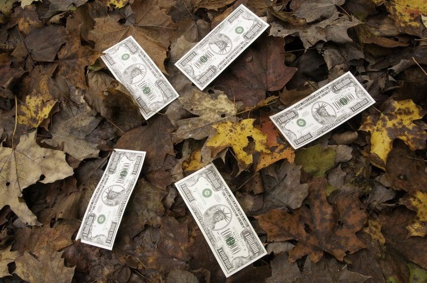 Play money grown on trees Five million-dollar bills on top of fallen autumn leaves.jpeg
